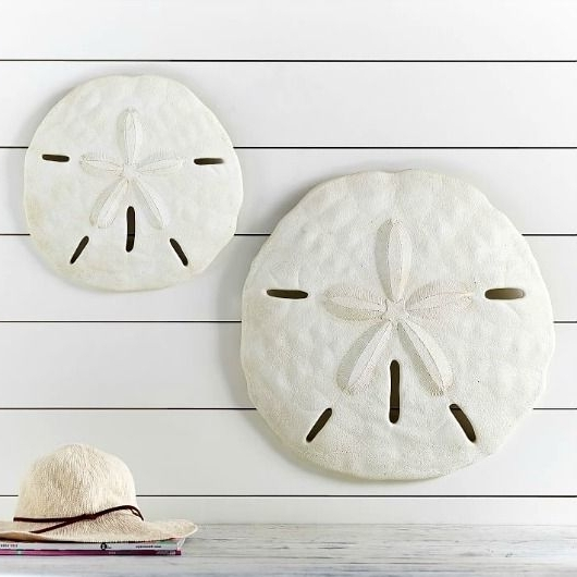 Famous Large Starfish Wall Decors In Large Starfish & Sand Dollar For Wall Decor (View 11 of 15)