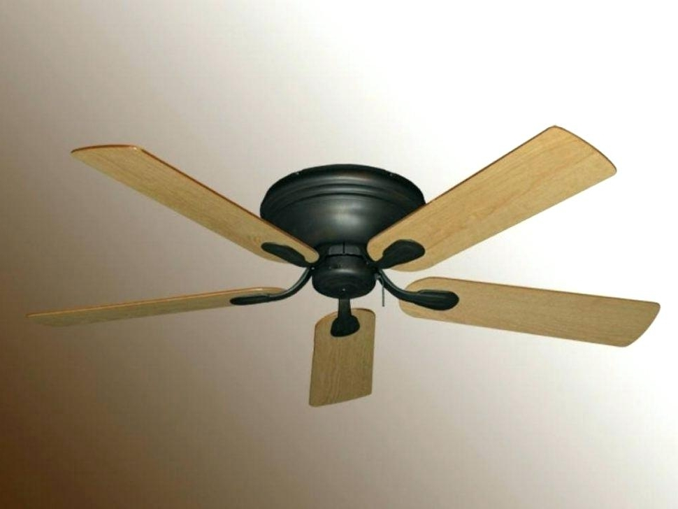 Famous Outdoor Fan With Light Ceiling Fan With Light Modern Outdoor Fans Throughout Outdoor Ceiling Fans With Light Globes (View 9 of 15)