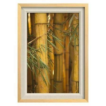 Famous Walmart Framed Art Intended For Bamboo Wall Art Inspirational Bamboo Ii Framed Wall Art Walmart (View 2 of 15)