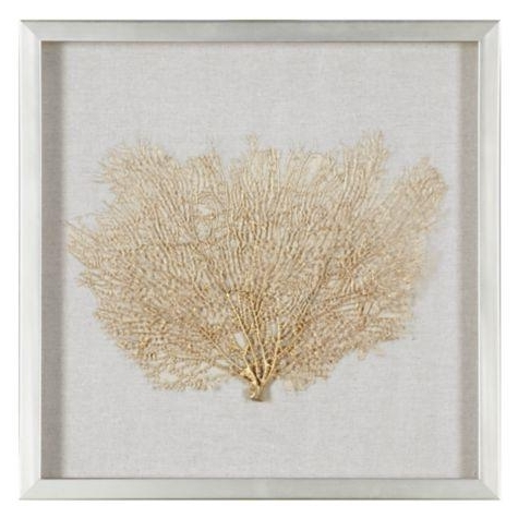 Gold Sea Fan Shadowbox Pertaining To Popular Sea Fan Wall Art (View 10 of 15)