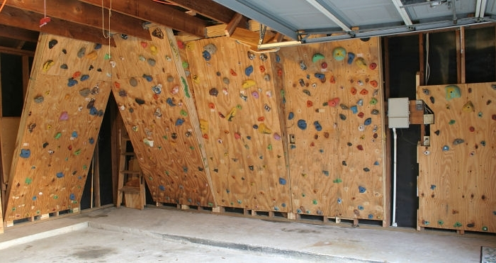 Home Bouldering Wall Design For Recent Sumptuous Design Ideas How To Build A Home Rock Climbing Wall Fresh (Gallery 13 of 15)