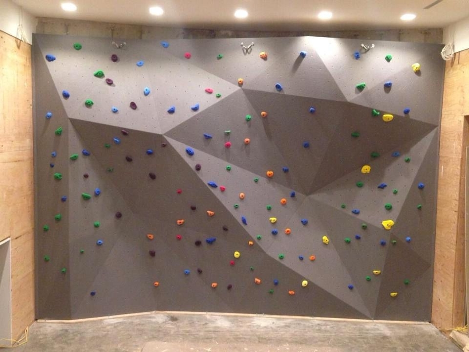 Featured Photo of Home Bouldering Wall Design