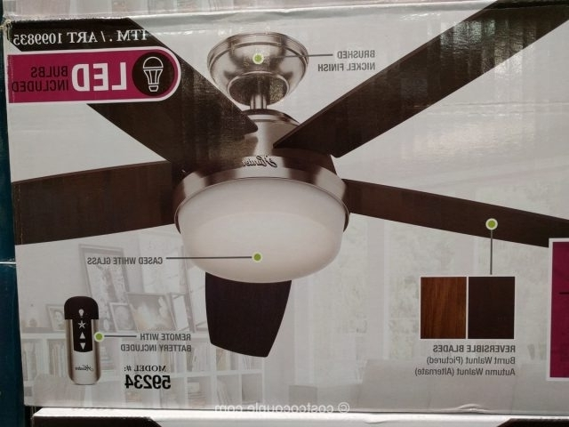 Hunter Avia Led Indoor Ceiling Fan Home And Furniture Ideas For Widely Used Outdoor Ceiling Fans At Costco (Gallery 1 of 15)