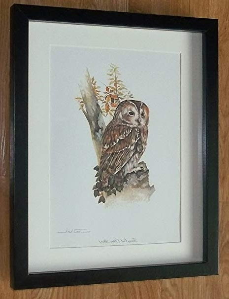 Joel Kirk Vintage Print, Owl Framed Wall Art - 11''x14'' Frame throughout Well-liked Owl Framed Wall Art