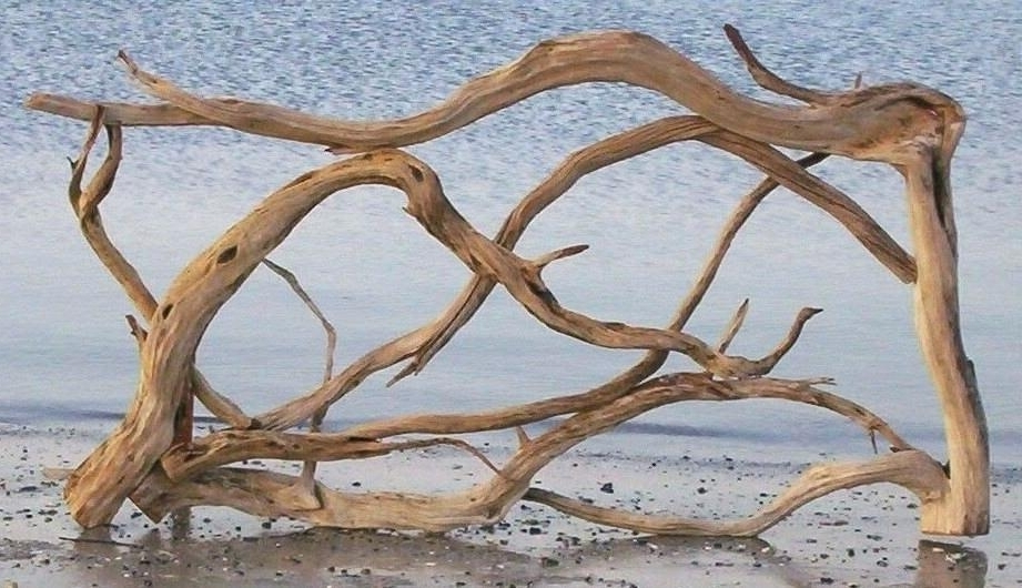 Large Driftwood Wall Art With Well Known Driftwood Wall Art For Sale Wall Art Large Driftwood Wall Art Gypsy (View 10 of 15)
