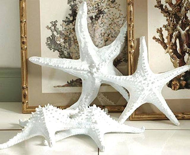 Large Starfish Wall Decors For Recent Starfish Wall Decor – Queeryoungcowboys (View 9 of 15)