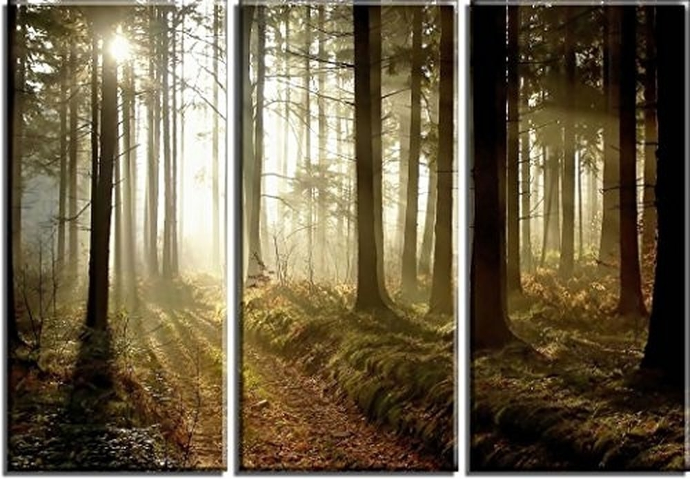 Latest Jungle Canvas Wall Art Within Free Shipping Hd Printed 4 Panel Canvas Art Jungle Sunshine Canvas (View 10 of 15)