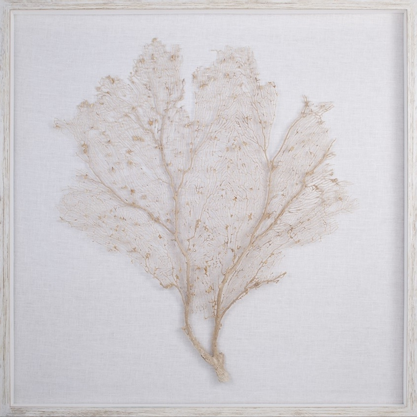 Latest Sea Fan Wall Art For The Well Appointed House – Luxuries For The Home – The Well (View 6 of 15)