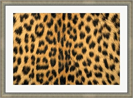 Leopard Print Wall Art Pertaining To Latest Cheap Leopard Print Wall Art, Find Leopard Print Wall Art Deals On (View 6 of 15)