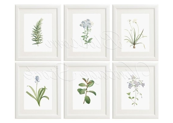 Light Blue Botanical Print Set Large Prints Botanical Print (View 4 of 15)