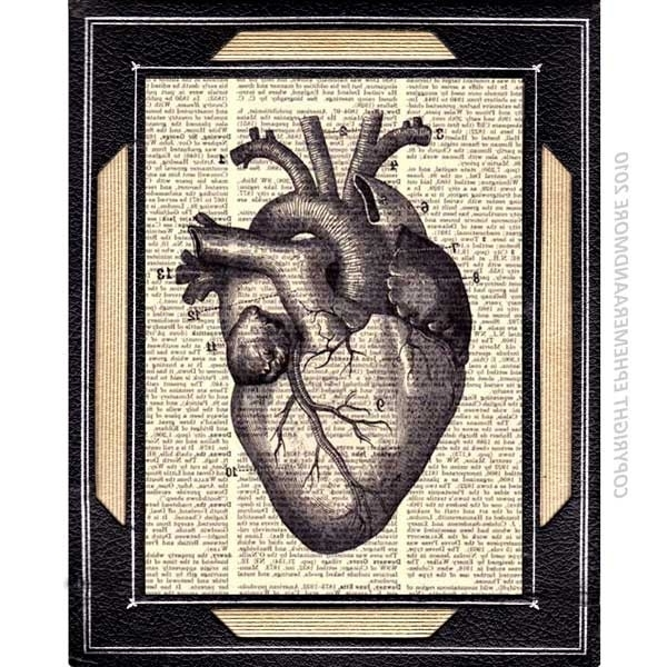 Medical Wall Art Intended For Widely Used Wall Art Designs: Best 10 Medical Wall Art Anatomical Decor Medical (View 12 of 15)