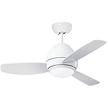 Most Current Outdoor Ceiling Fans With Removable Blades For Emerson Cf244Lww Curva 44 Inch Modern Ceiling Fan, 3 Blade Ceiling (View 11 of 15)