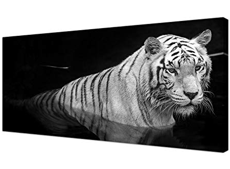 Most Recent Wallfillers Large Black And White Canvas Wall Art Of A Tiger With Regard To Large Black And White Wall Art (View 14 of 15)