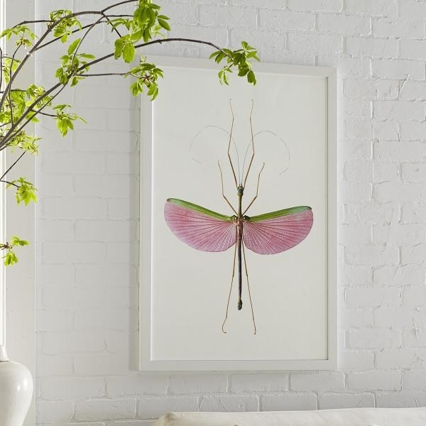 Most Recently Released Insect Wall Art Pertaining To Pink Insect Wall Art (View 11 of 15)