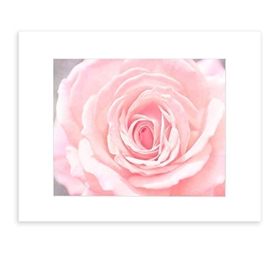 Most Recently Released Pink Flower Wall Art Inside Amazon: Pink Wall Art, Pink Flower Print, Pink Floral Wall Decor (View 6 of 15)