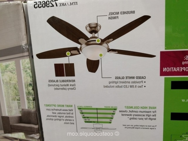 Most Up To Date Awesome Costco Outdoor Ceiling Fans Ideas Indoor Stunning Hunter Throughout Outdoor Ceiling Fans At Costco (View 9 of 15)