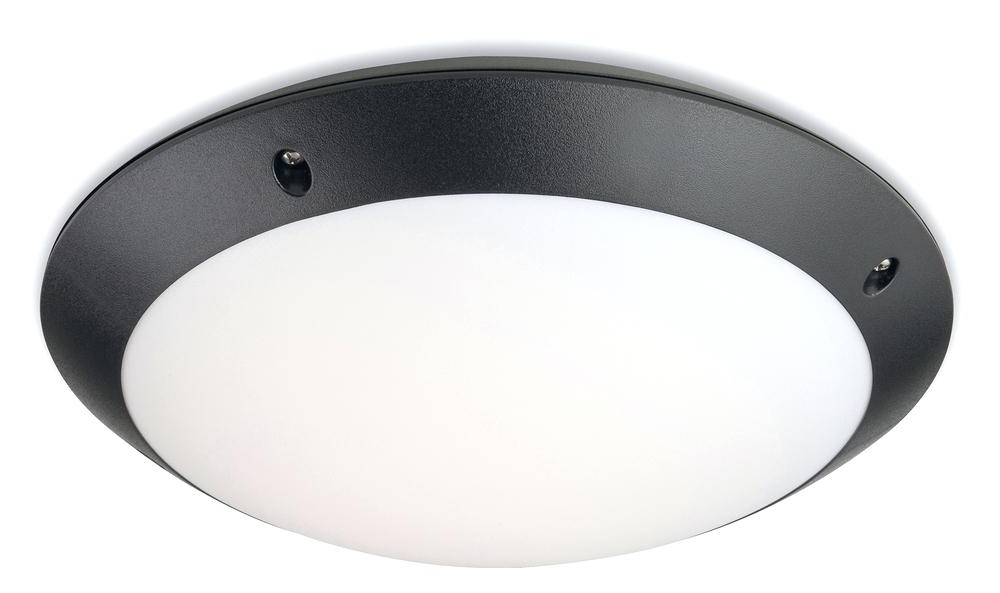 Motion Sensor Outdoor Ceiling Light Cute Home Depot Ceiling Lights In Recent Outdoor Ceiling Fans With Motion Light (View 7 of 15)