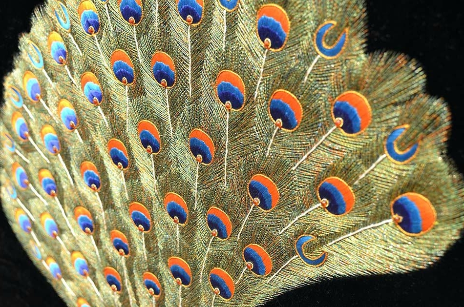 Newest Peacock Wall Hanging Peacock Wall Art Jeweled Tapestry Decorative Intended For Jeweled Peacock Wall Art (Gallery 8 of 15)