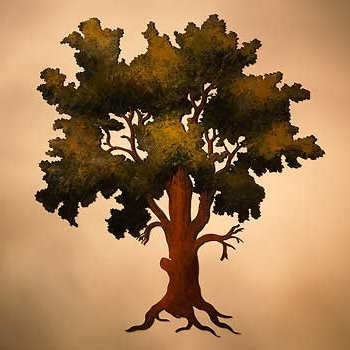 Oak Tree Wall Art For Well Known Wall Art Ideas Design Gnarled Successfully Oak Tree Remarkable Metal (View 8 of 15)