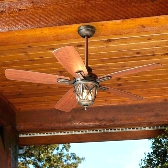 Featured Photo of Outdoor Ceiling Fans With Lights At Lowes