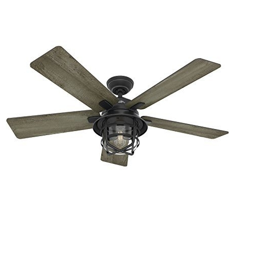 "Outdoor Ceiling Fans With Remote Pertaining To Newest Hunter Fan 54"" Weathered Zinc Outdoor Ceiling Fan With A Clear Glass (View 13 of 15)"