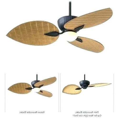 Outdoor Fan With Remote Outdoor Ceiling Fan With Remote 3 Blade With Widely Used Outdoor Ceiling Fans With Light And Remote (View 11 of 15)