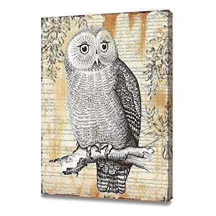 Owl Framed Wall Art Regarding Most Up To Date Amazon: Artkisser Original Painting Of Owl Pictures On Canvas (View 3 of 15)