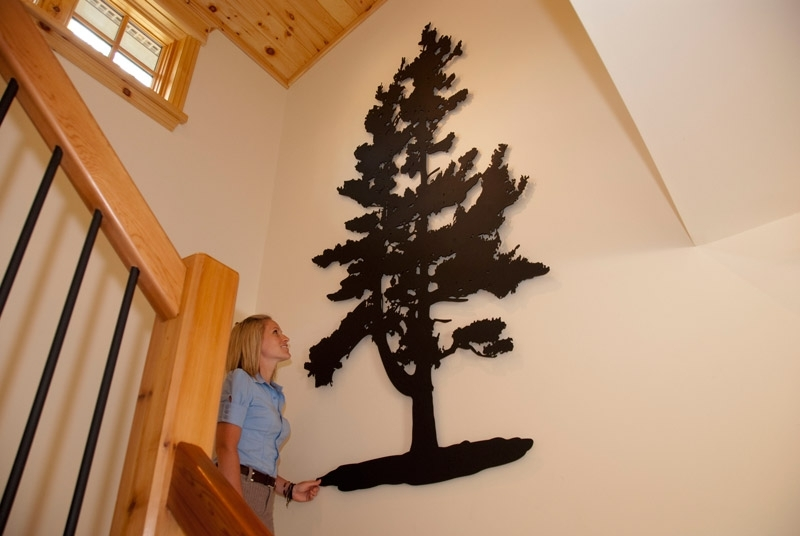 Pine Tree Wall Art Regarding Widely Used Pine Tree – Custom Laser Cut Metal Art (View 9 of 15)