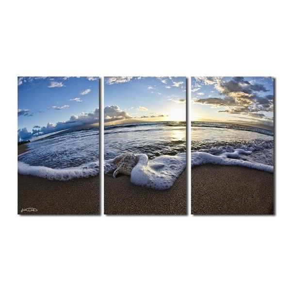 Preferred 3 Set Canvas Wall Art Within Shop Christopher Doherty 'sea Star Ii' 3 Piece Canvas Wall Art – On (View 13 of 15)