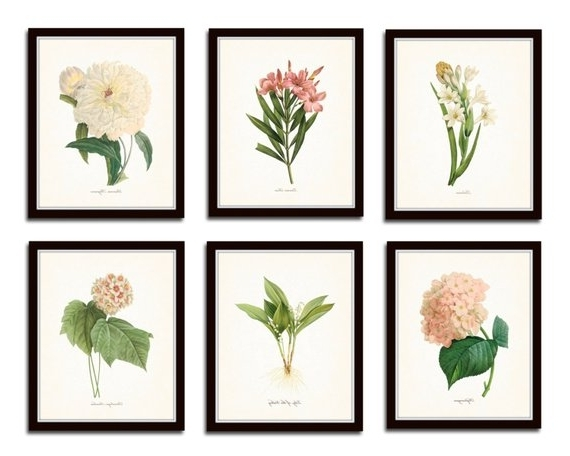 Preferred Botanical Prints Etsy Regarding Botanical Garden Print Set No (View 13 of 15)