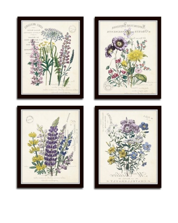 Recent Botanical Prints Etsy Inside French Botanical Collage Print Set No (View 15 of 15)