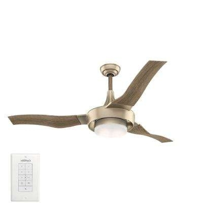 Recent Coastal – Gold – Ceiling Fans With Lights – Ceiling Fans – The Home Within Gold Coast Outdoor Ceiling Fans (View 12 of 15)