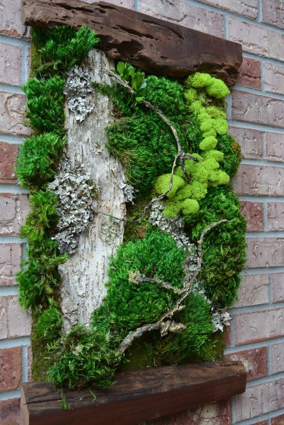 Recent Living Moss Wall Topiary Wall Art – Jazz Arts Within Topiary Wall Art (View 9 of 15)