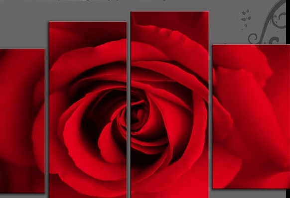 Red And Turquoise Wall Art In Most Popular Single Face On Rose On 4 Panel Canvas Wall Art Print – Red Or (View 8 of 15)