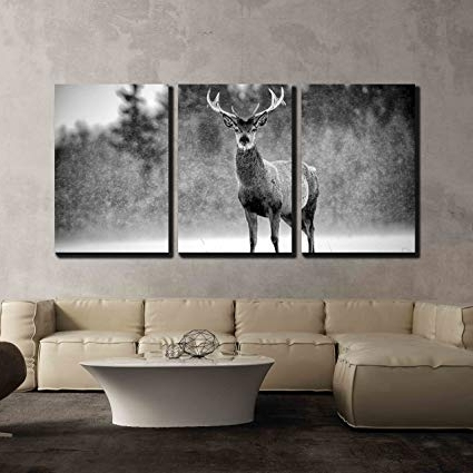 Stag Wall Art Inside Well Known Amazon: Wall26 – 3 Piece Canvas Wall Art – Red Deer Stag Cervus (View 4 of 15)