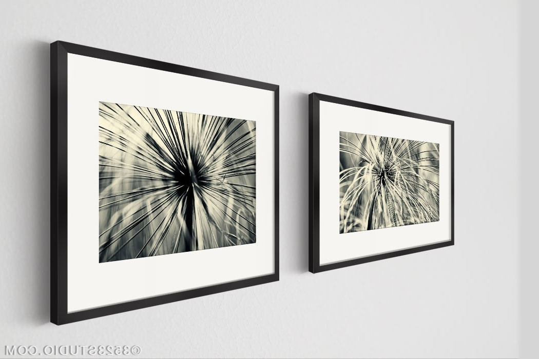 Stylish Inspiration Ideas Wall Art Set Of 2 Home Pictures Flower Pertaining To Newest Black And White Wall Art Sets (View 4 of 15)