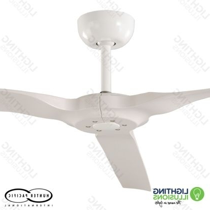 "Sunshine Coast Outdoor Ceiling Fans Within Most Up To Date White Radical Indoor/outdoor 60"" 3 Blade Dc Ceiling Fan With Remote (View 9 of 15)"