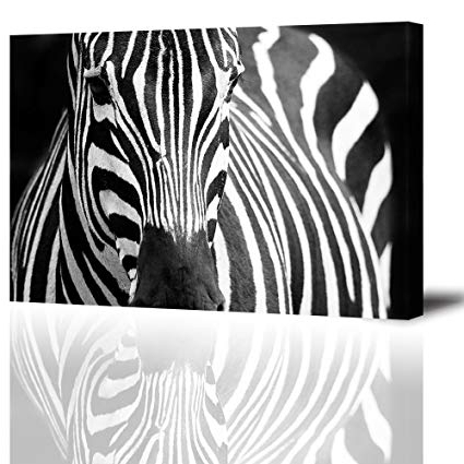 Well Known Amazon: Zebra Wall Art Decor For Bedroom, Piy African Animals With Zebra Wall Art Canvas (View 3 of 15)