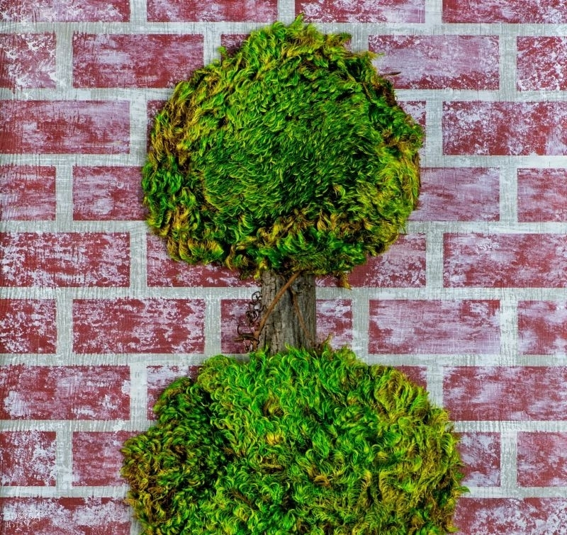 Well Known Topiary Wall Art In Topiary Wall Art – The Navage Patch (View 15 of 15)