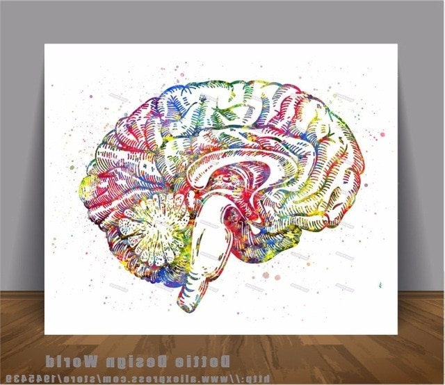 Well Liked Human Brain Anatomy Print Watercolor Canvas Painting Medical Wall Within Medical Wall Art (View 6 of 15)