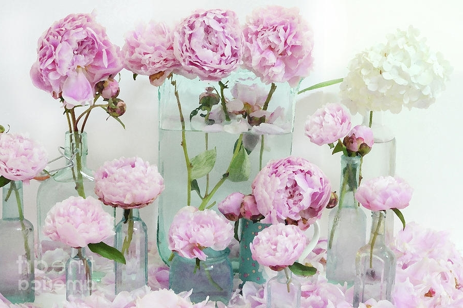 Widely Used Pink Peonies Flowers Wall Art Peonies Pink Aqua Shabby Chic Cottage For Pink Flower Wall Art (View 14 of 15)