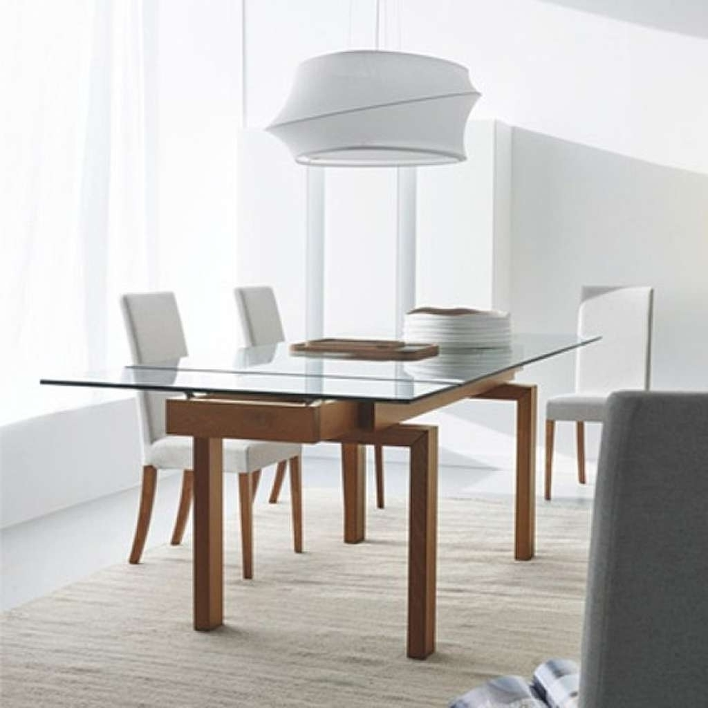 Extendable Glass Dining Tables With Regard To Recent Best Inspired Extendable Glass Dining Table On A Budget At New Home (Gallery 2 of 25)