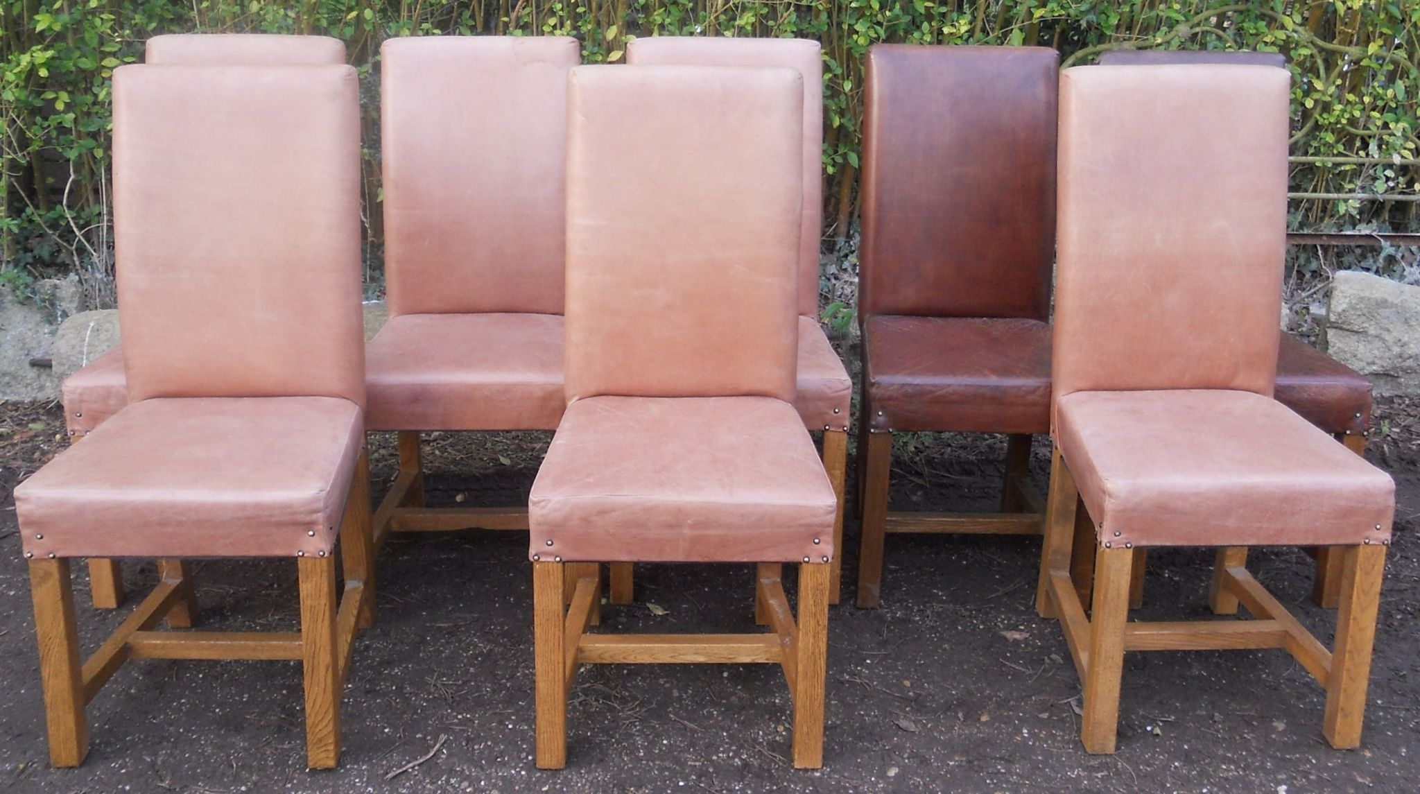 Set Oi Eight Leather & Oak Dining Chairs Inside Well Known Oak Leather Dining Chairs (View 7 of 25)