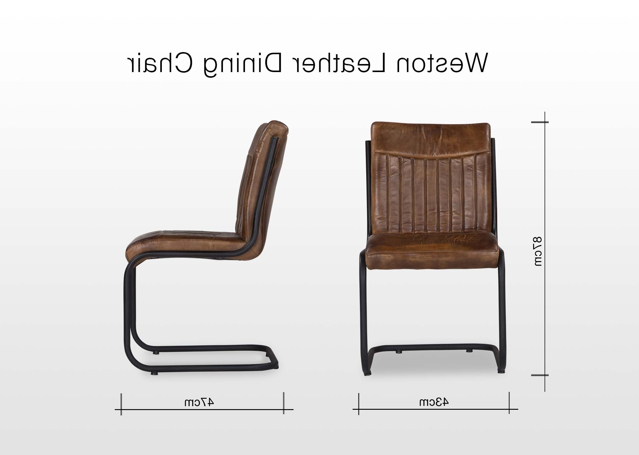 Weston Leather And Metal Dining Chair – Ez Living Furniture Intended For Well Liked Leather Dining Chairs (View 24 of 25)