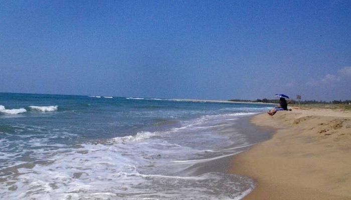 2017 8 Best Beaches In Pondicherry For Every Beach Lover in Auriville Beach Umbrellas