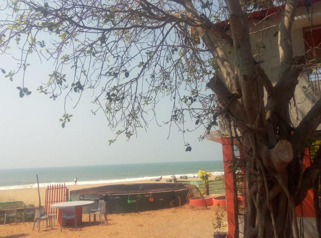 Auriville Beach Umbrellas Regarding Famous Bed And Breakfast Rainbow In Auroville, India – Booking (View 8 of 25)