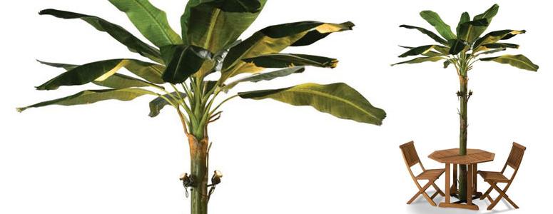 Banana Leaf Patio Umbrella Tree For Recent Tropical Patio Umbrellas (View 12 of 25)