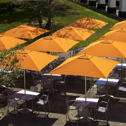 Well Known Landscape Forms Is Even More Thrilled To Introduce The Expansion Of In Norah Rectangular Market Umbrellas (View 23 of 25)
