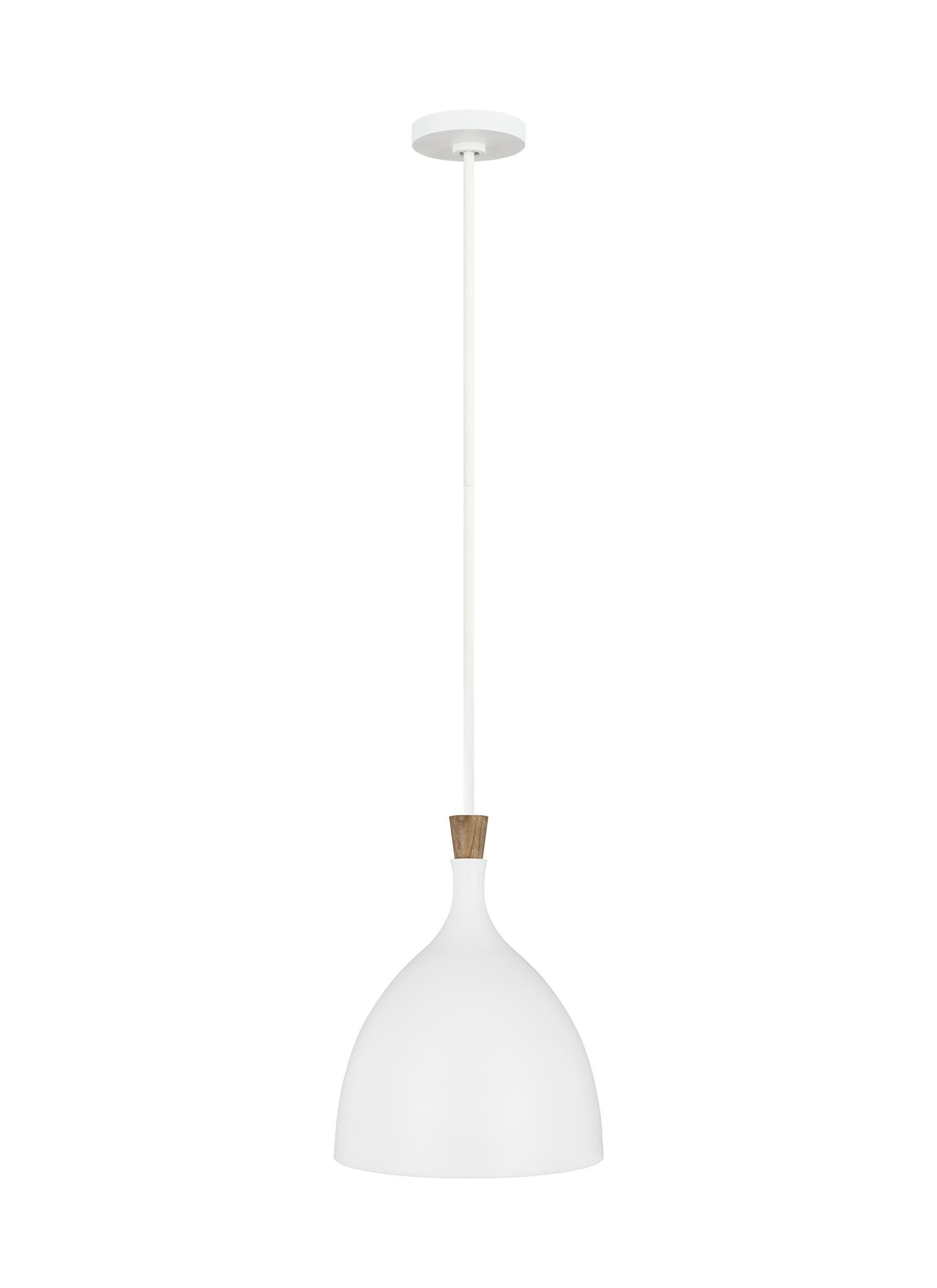 Most Up To Date Darwin 1 Light Single Dome Pendant Throughout Monadnock 1 Light Single Dome Pendants (View 13 of 25)