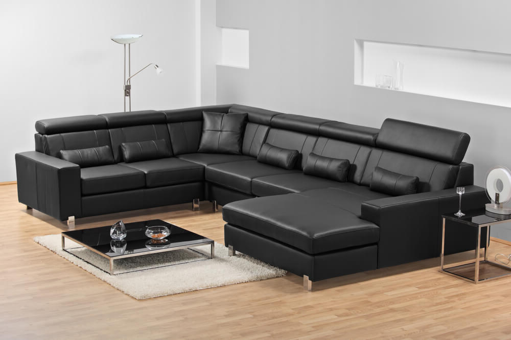 Felton Modern Style Pullout Sleeper Sofas Black Regarding Preferred 20 Types Of Sofas & Couches Explained (With Pictures) (View 2 of 25)